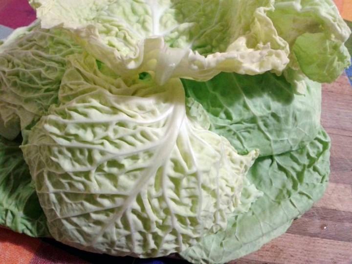 involtini verza e patate - verza